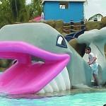 figura resbaladero ballena